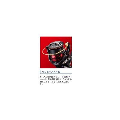 画像4: ≪'19年8月新商品!≫ シマノ '19 セフィア SS C3000SHG [8月発売予定/ご予約受付中]
